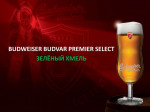 BUDWEIZER Budbar Premier Select